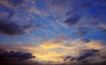 Wallpapers-room_com___sunset_clouds_by_beefpepsi_1440x900