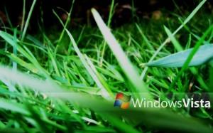 windowsz (4)
