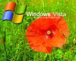 Vista (180)