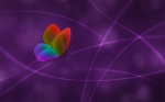 vladstudio_rainbow_butterfly_color2_1440x900