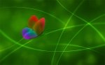 vladstudio_rainbow_butterfly_color3_1440x900