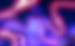 Stars_1440x900