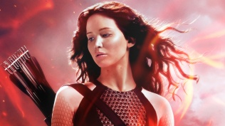 Catching Fire (1)