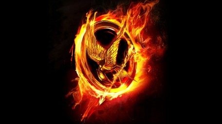 Catching Fire (4)