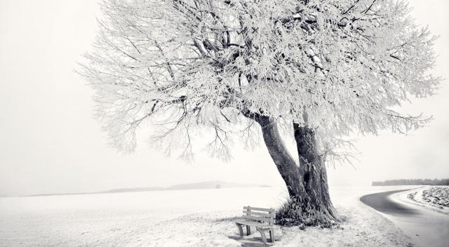 WinterBenchedHD
