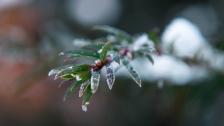 Snowflakes - 2560x1440