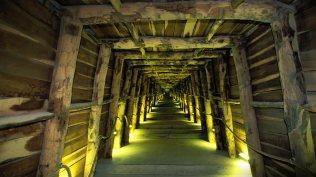 2013-12-17_FR-FR8904743907_Caves-vinicoles-RocbC3A8re-Terra-Vinea-C3A0-Portel-des-CorbiC3A8res-Aude-Languedoc-Roussillon