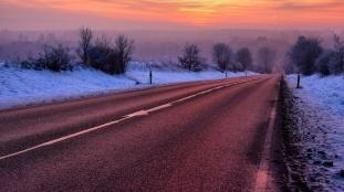 Purle winter