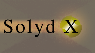 Solyd X - Wall - Logo Only - Black Text - Heal Back_Redraw